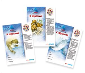 diploma's